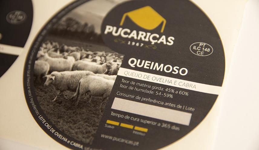 comalma-creativestudio_queijo_pucarica